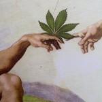cannabis and spirituality, Stephen Gray, sacred herb
